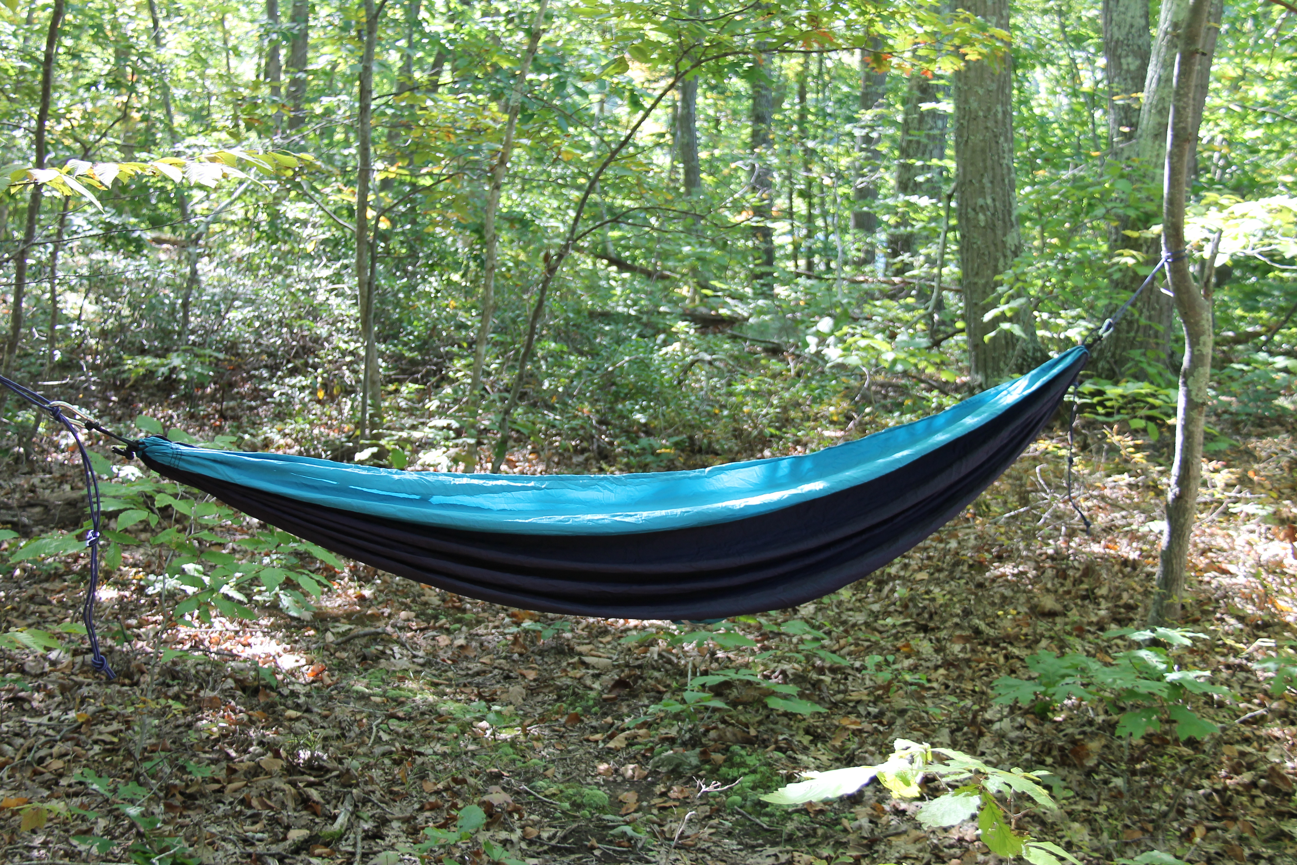 grand trunk double hammock review  rh   kevinestela